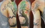 Tree for all Seasons tattoo