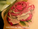painting the roses red tattoo