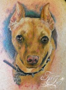 min pin dog tattoo