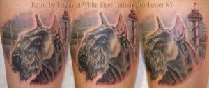 schnauzer tattoo