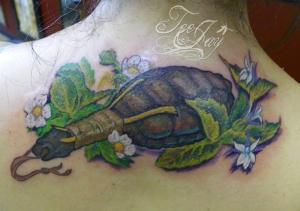 turtle rattle tattoo