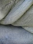 rhino hide
