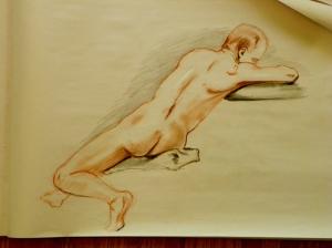 figure drawing male back