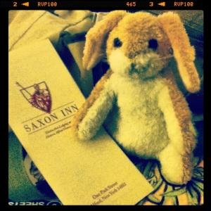 bunny at the Saxon