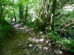 path through Vallee du Madet
