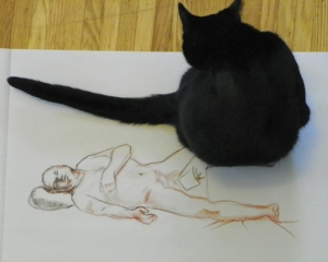 figure drawing plus helper cat