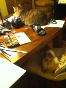 Helper Cats