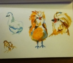 watercolor sketch of chickens