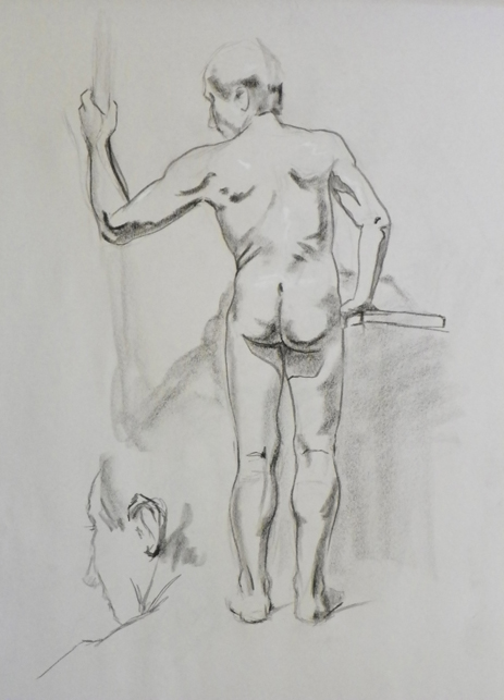 male back figure drawing