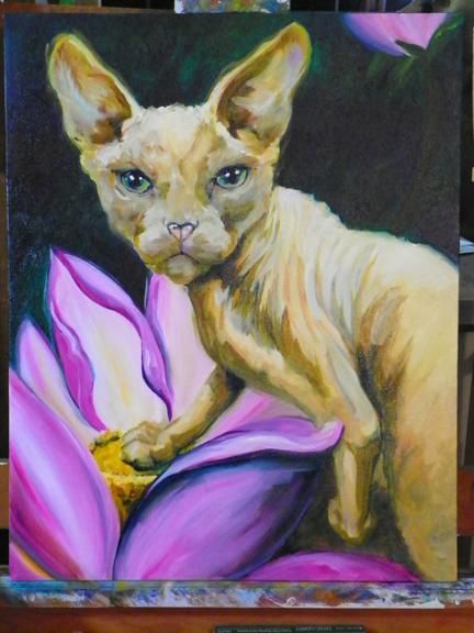 sphinx cat painting in progress
