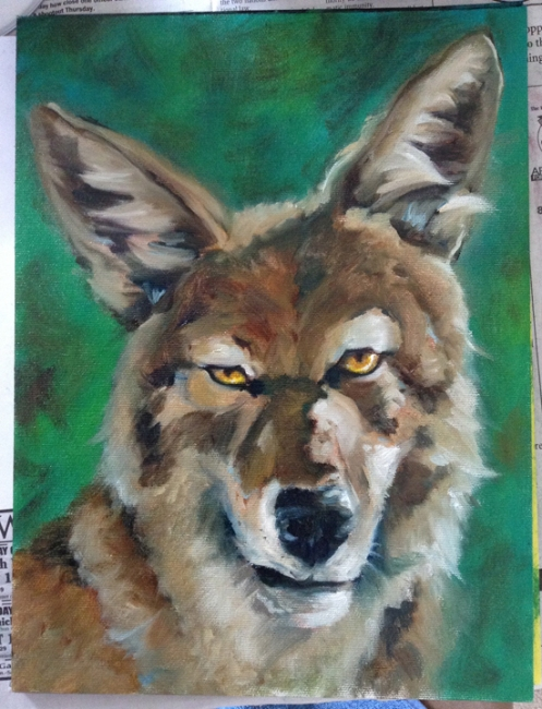 coyote oil painting