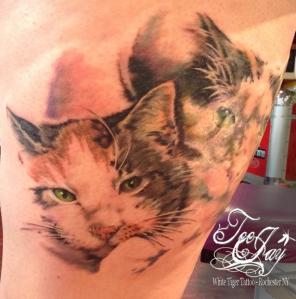 kitty tattoo