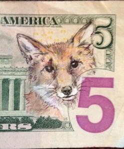 fox on five
