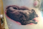 Hady portrait tattoo dog