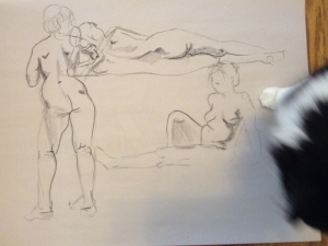 figure drawing with cat