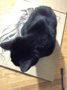 Cat Assistant