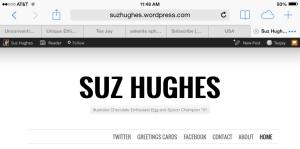 Suz Hughes Blog