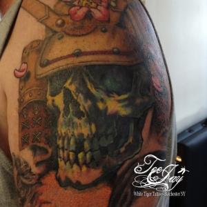 samurai skull healed