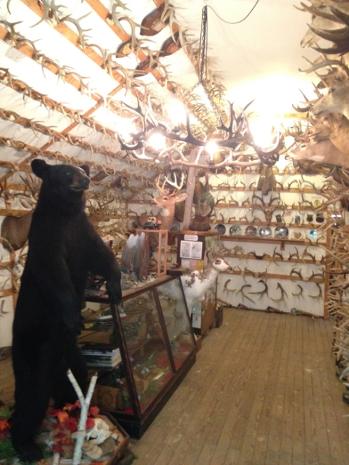 inside the antler shed second floor main building