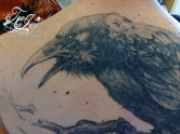 raven tattoo detail