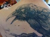 raven tattoo detail