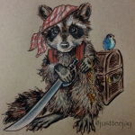 Day11PirateRaccoon
