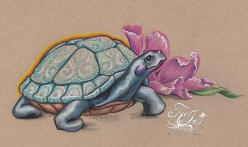 fancy shelled tortoise