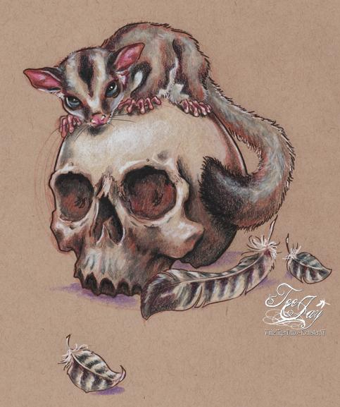 sugar (gllider) skull