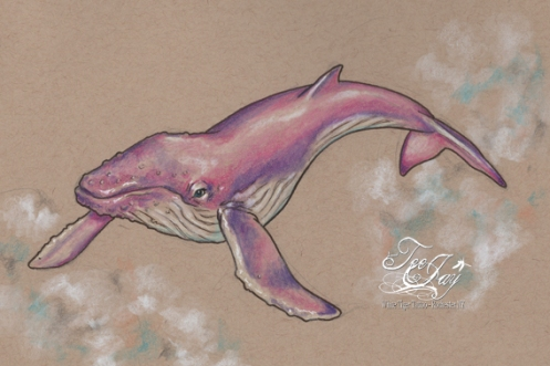 flying pink whale