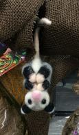 OpossumIMG_3622