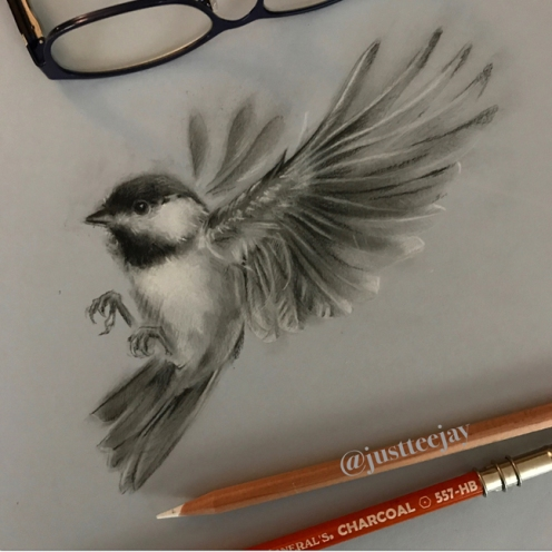 chickadee in charcoal