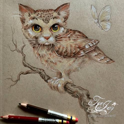 MeowlIMG_0469
